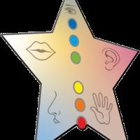 logo magnétisme plaisir